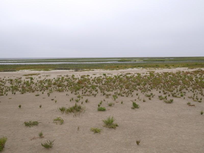 Wangerooge Südostseite