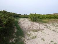 Wangerooge Dünenwanderweg