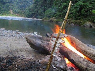fish_river.jpg