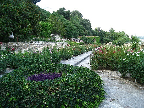 Just a Bit More Botanical Garden