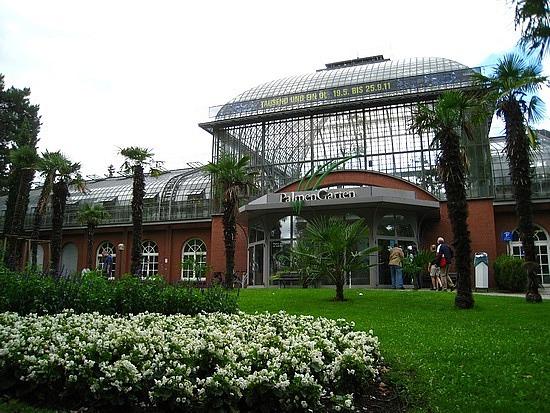 Palmen Garten ...