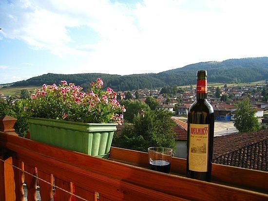 Hotel Panorama Balcony ...