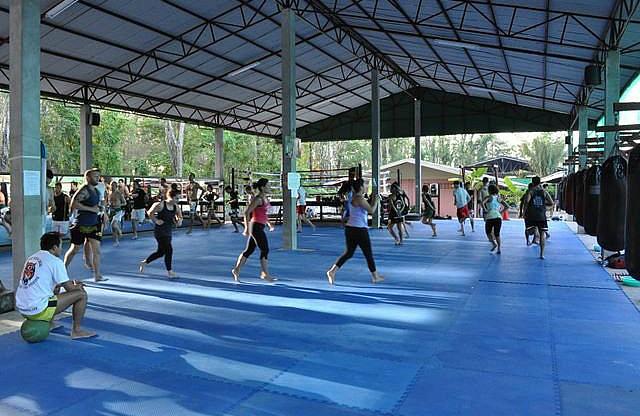 Tiger gym