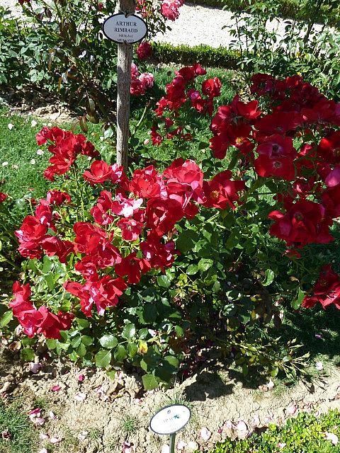 Jardins des bagatelles-8