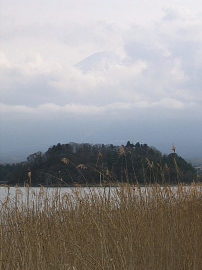 Todai-ji temple #6