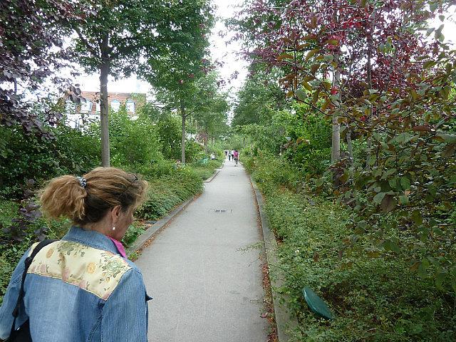 Jardins planté-1