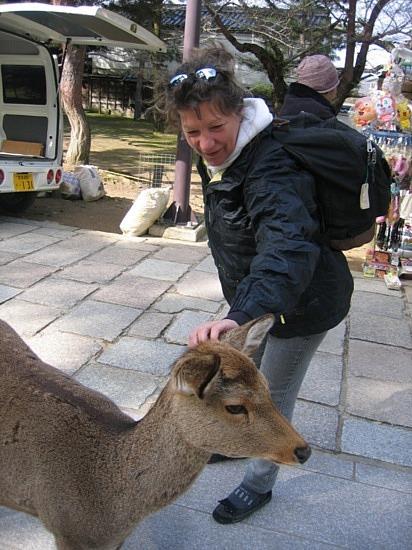 Daim amicaux - Deer (or dear) friend