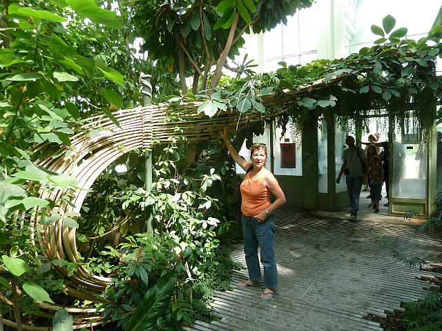 Jardins des plantes-4