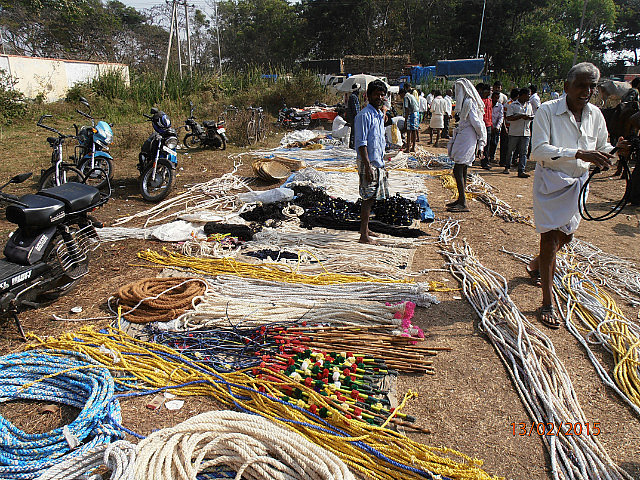 Cattle Market Ropes