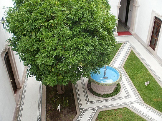 Pancho's courtyard