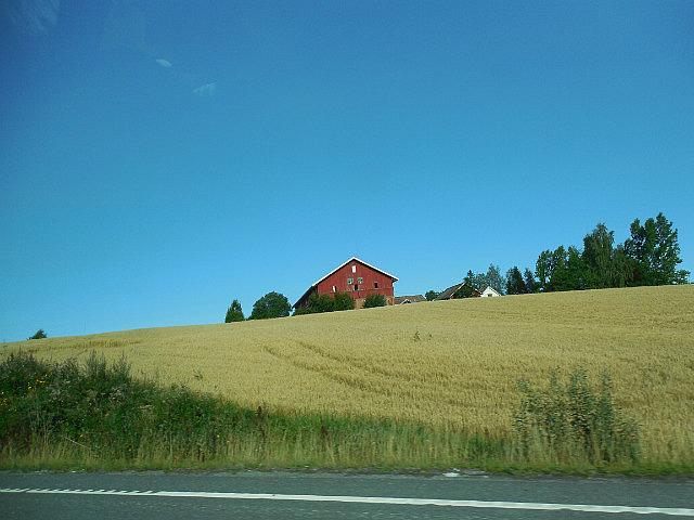 Pastoral scene between Oslo and Kongsberg