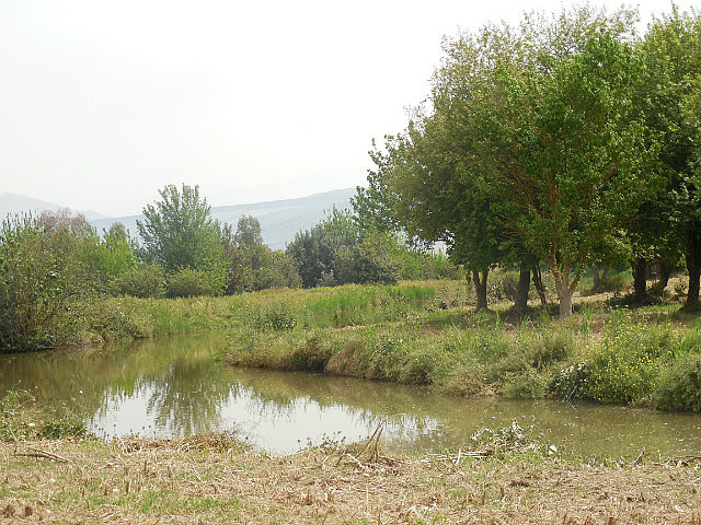 Hula Valley wetlands