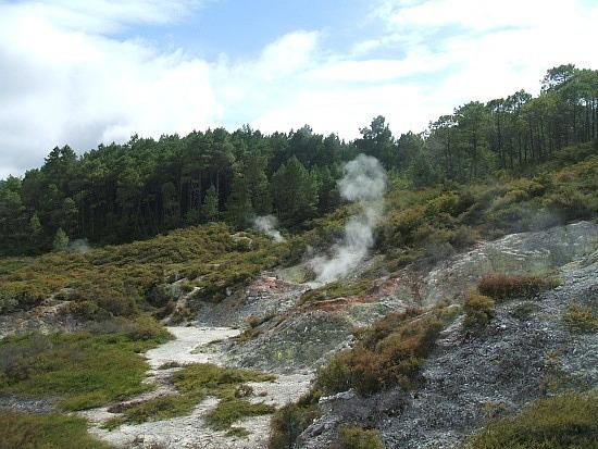 steaming hilltop