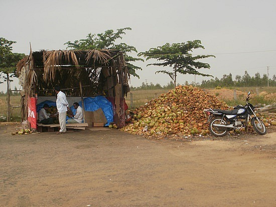 Little House with coconut shells