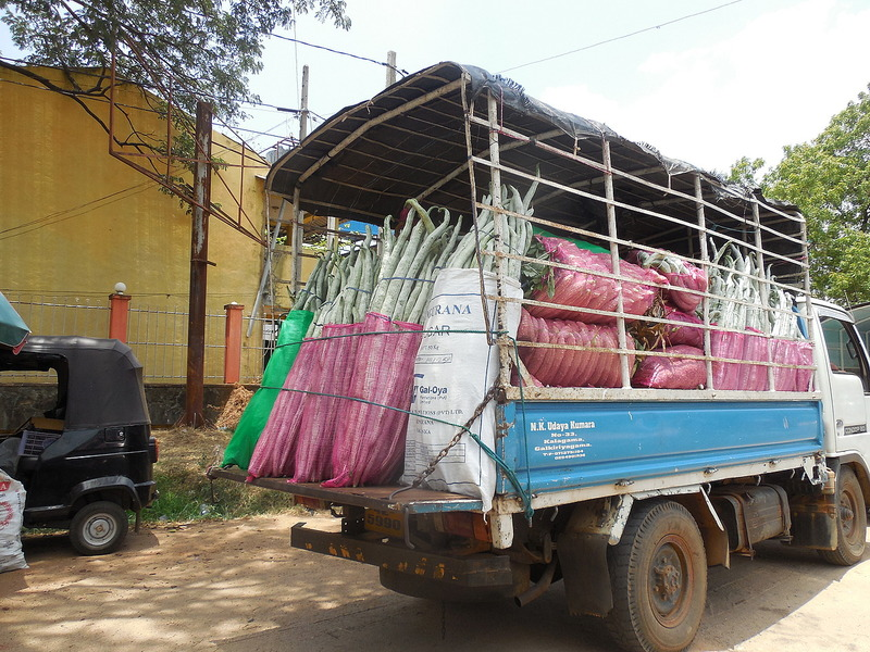 Central veg market truck
