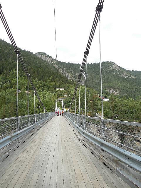 Bridge to plant