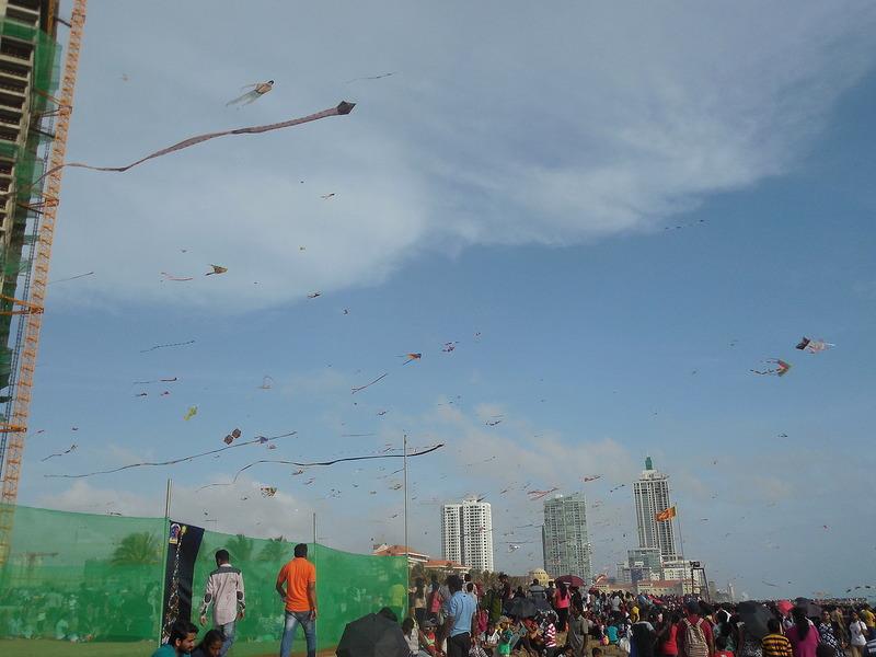 Lots of kites