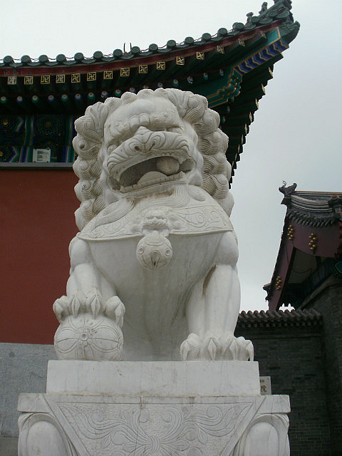 Lion at temple