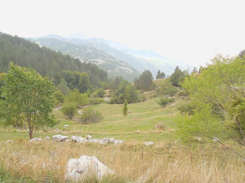 Montenegran farm