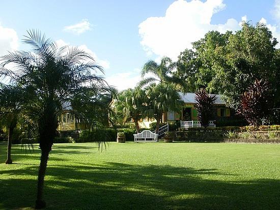 Romney Manor gardens