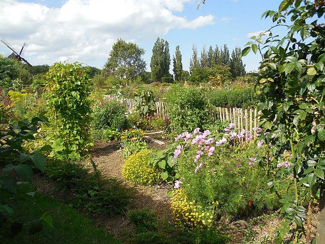 Linneus Gardens