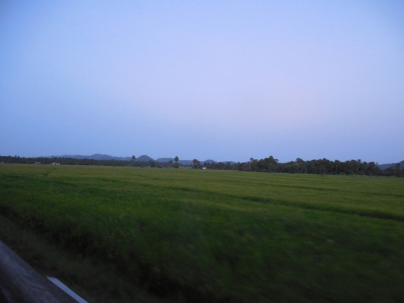 Landscape from train