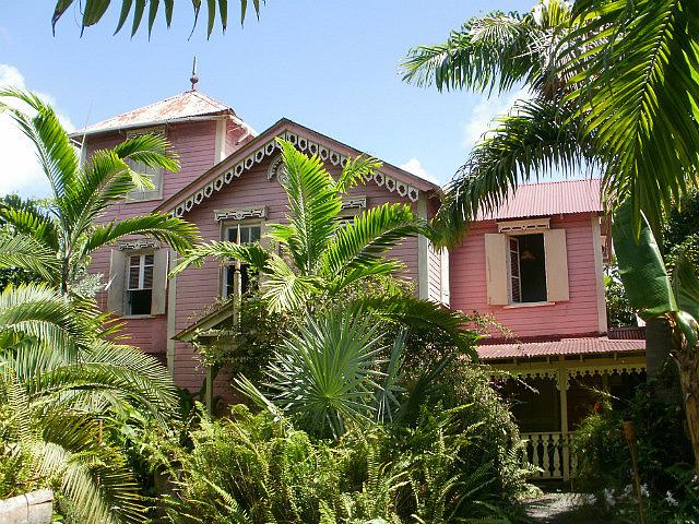 Pink Plantation