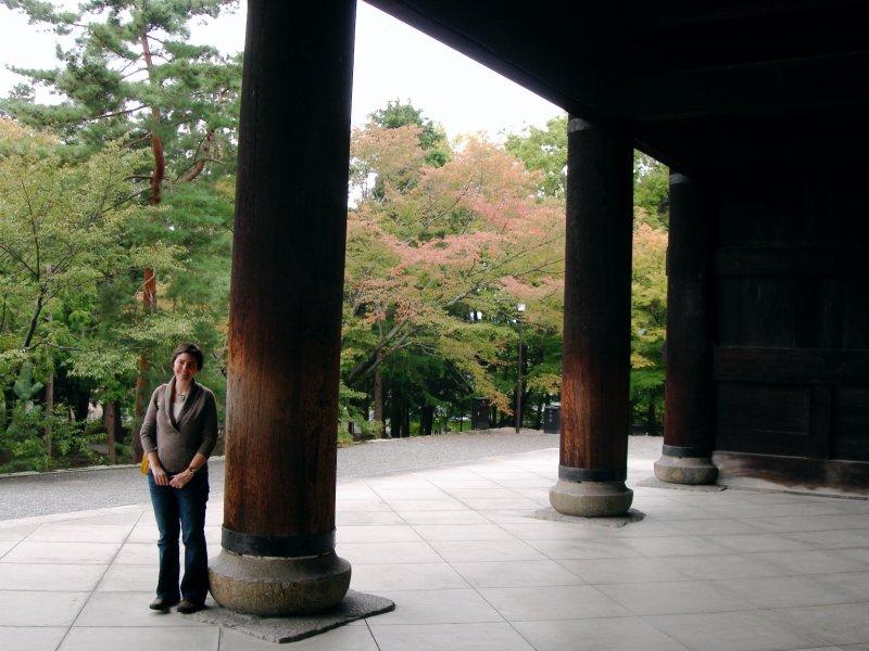large_Kyoto16HEP_column_est.jpg