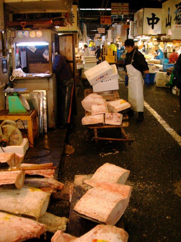 large_tokyo_tsukiji_int1.jpg