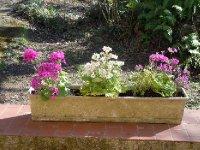 Beautiful flower box