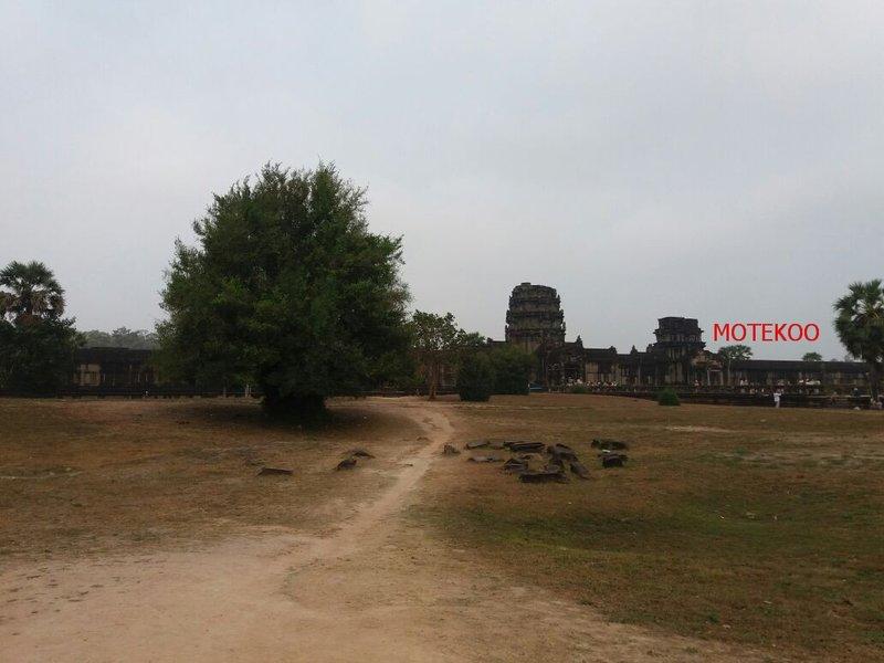 קמבודיה (482)