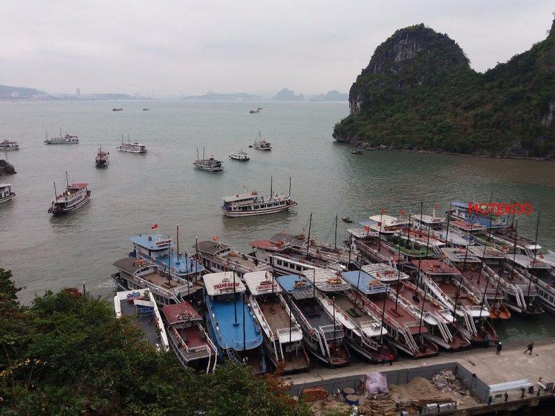 וייטנאם (196)