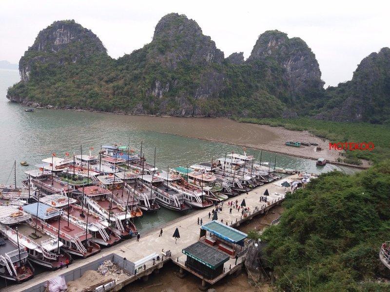 וייטנאם (197)
