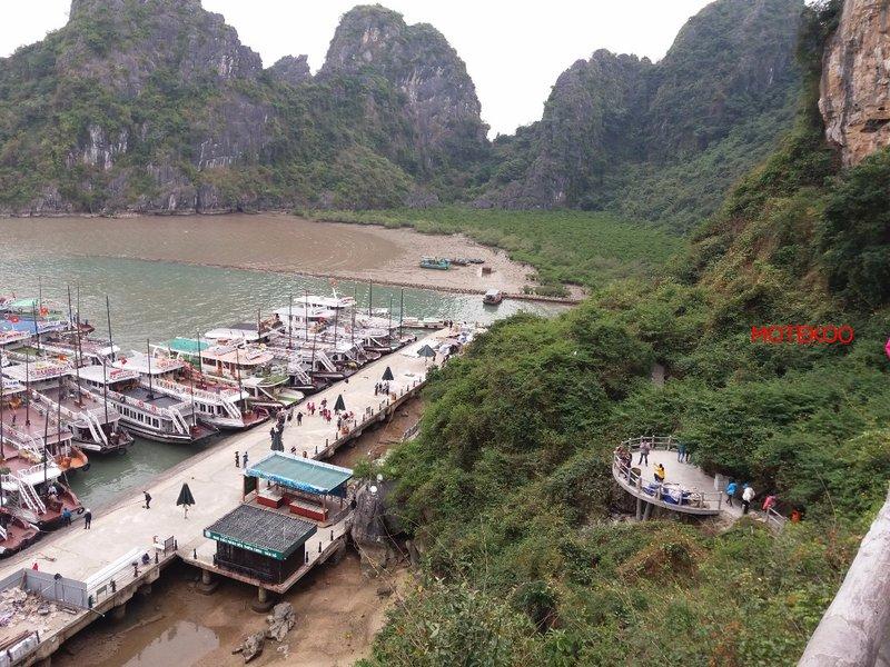 וייטנאם (198)