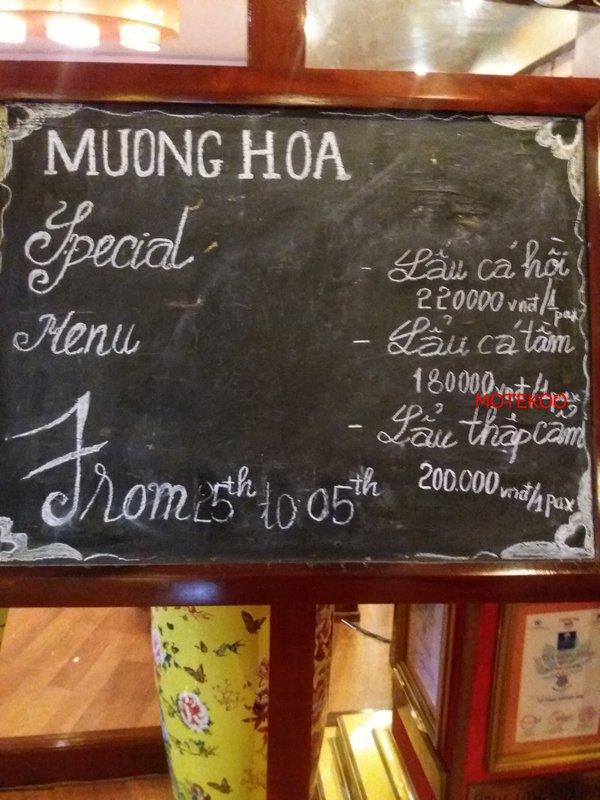 וייטנאם (303)