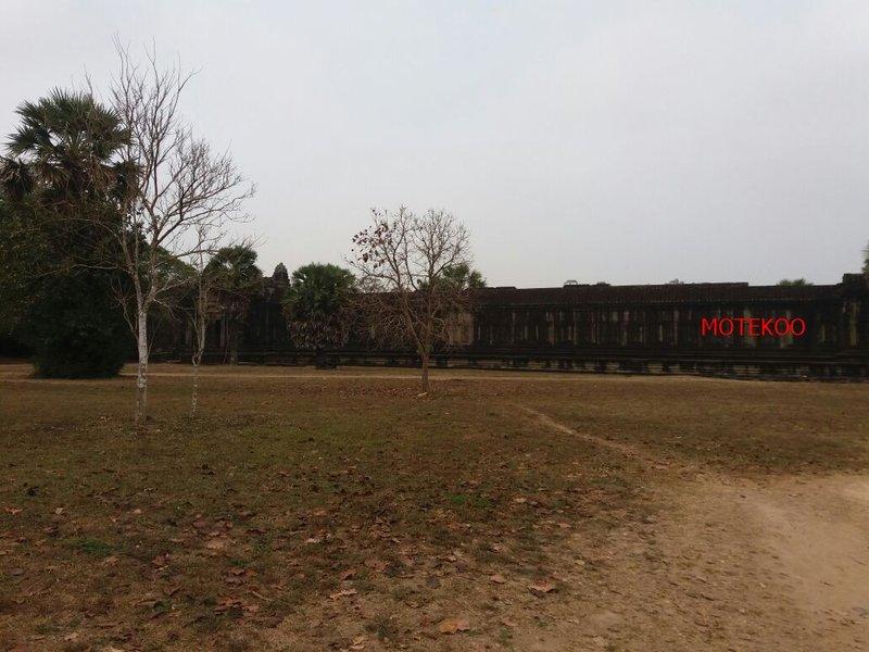 קמבודיה (477)