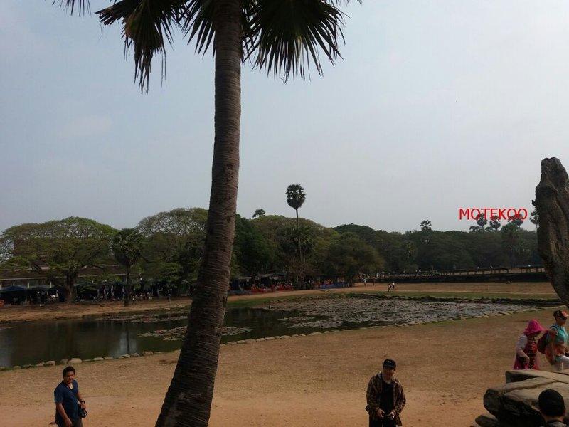 קמבודיה (487)