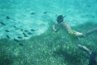 onderwater1.jpg