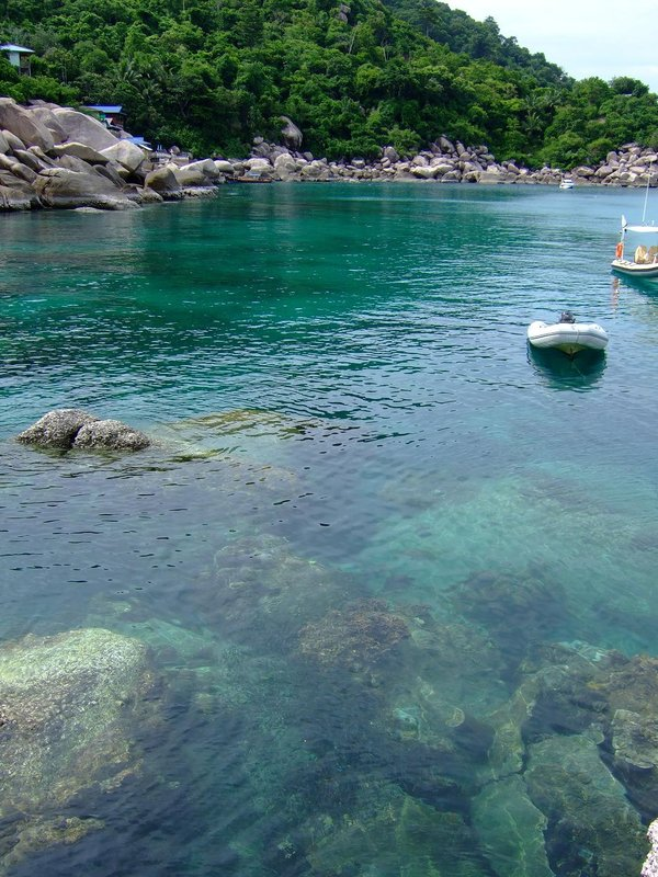 Great snorkelling on the east side of Koh Tao