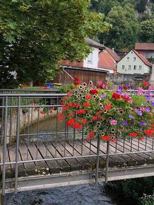 Flowers in the Village of Pottenstein
