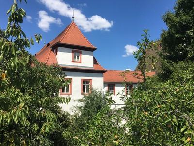 Schloss Plankenfels