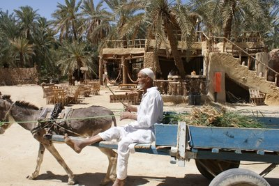 Passing local, Siwa Oasis