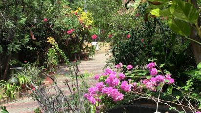 karthika resort garden