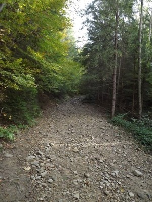 Dovbush Trail