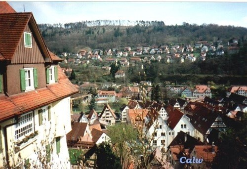 A view of Calw from the hill