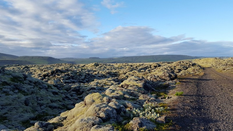 Iceland, lavafields along Ring Road 1 at the south coast