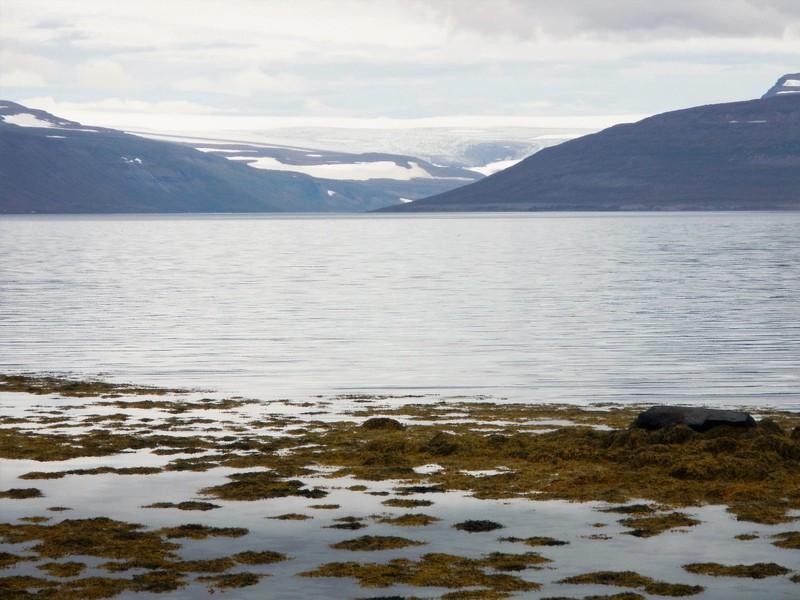 Iceland, Westfjords