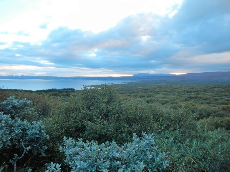Iceland, Saurbær, on the way back south, strange blueish sunlight