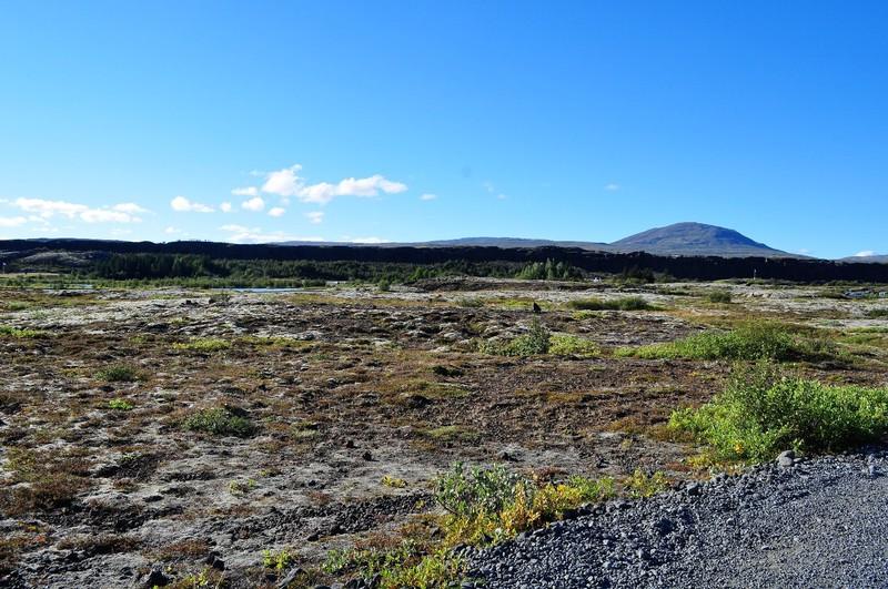 The lava scenery around Þingvellir