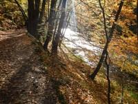 Germany - Harz Mountains - Thale - the enchanting Bodetal canyon walk